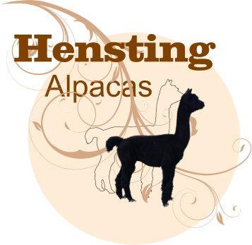 Hensting Alpacas